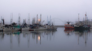 Gray Morning in the Harbor