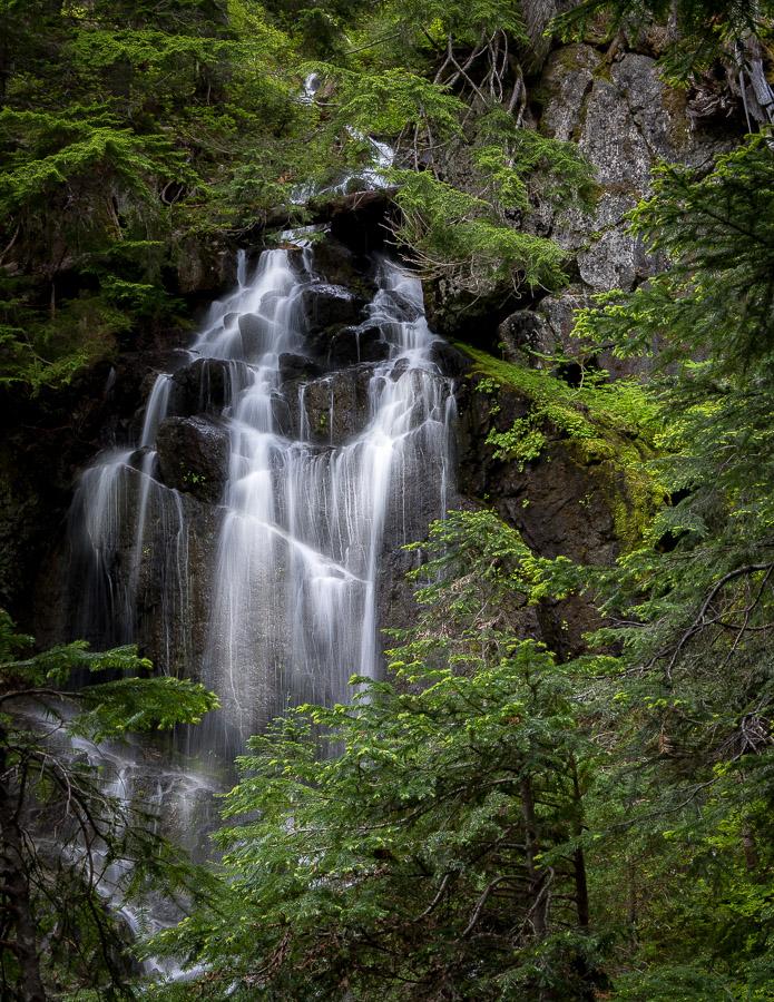 Another Rainier Cascade