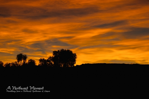 The clouds above Palouse State Park take on an orange hue on a late September evening.